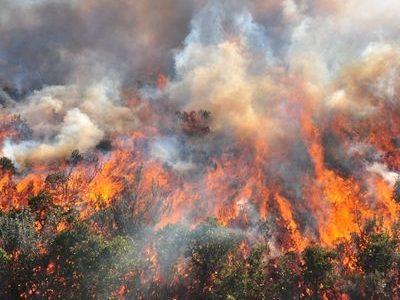 Forêts et risques naturels<br>les incendies