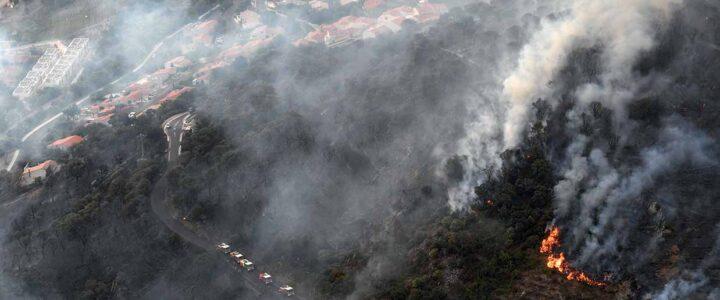 RISQUE FEU DE FORET : LES COLLECTIVITES FORESTIERES MULTIPLIENT LES ACTIONS EN DIRECTION DES ELUS